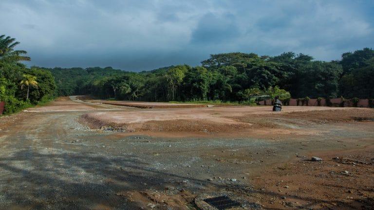Photographie prise par une boxe TimeLapse Go' en Guyane Française